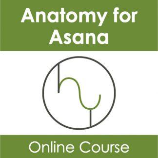 Anatomy for Asana